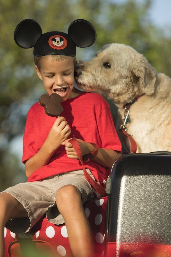 Dog's Welcome At Select WDW Resorts Starting Oct. 15th