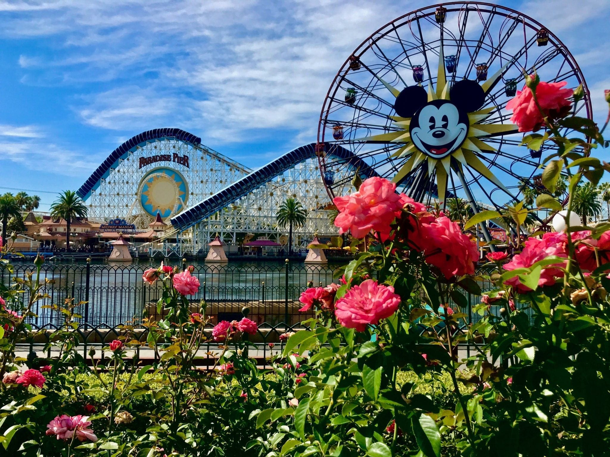 Top 5 Rides at California Adventure Park