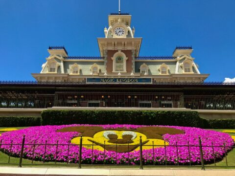 Pink and Yellow Mickey Mouse Flower Arrangement Below Magic Kingdom Entrance Sign