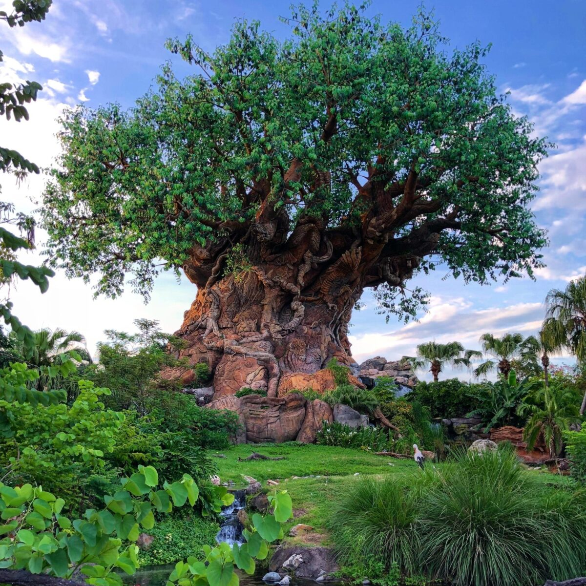 Attraction and Entertainment Details For Walt Disney World