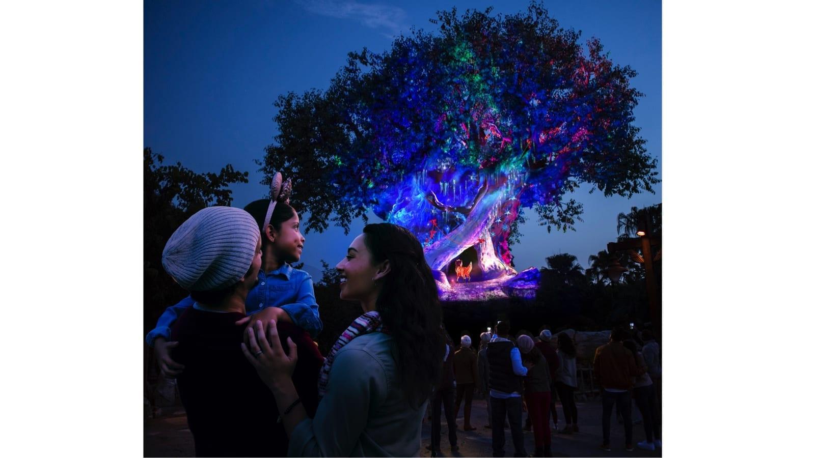 New Holiday Decor Planned for Disney's Animal Kingdom This Season