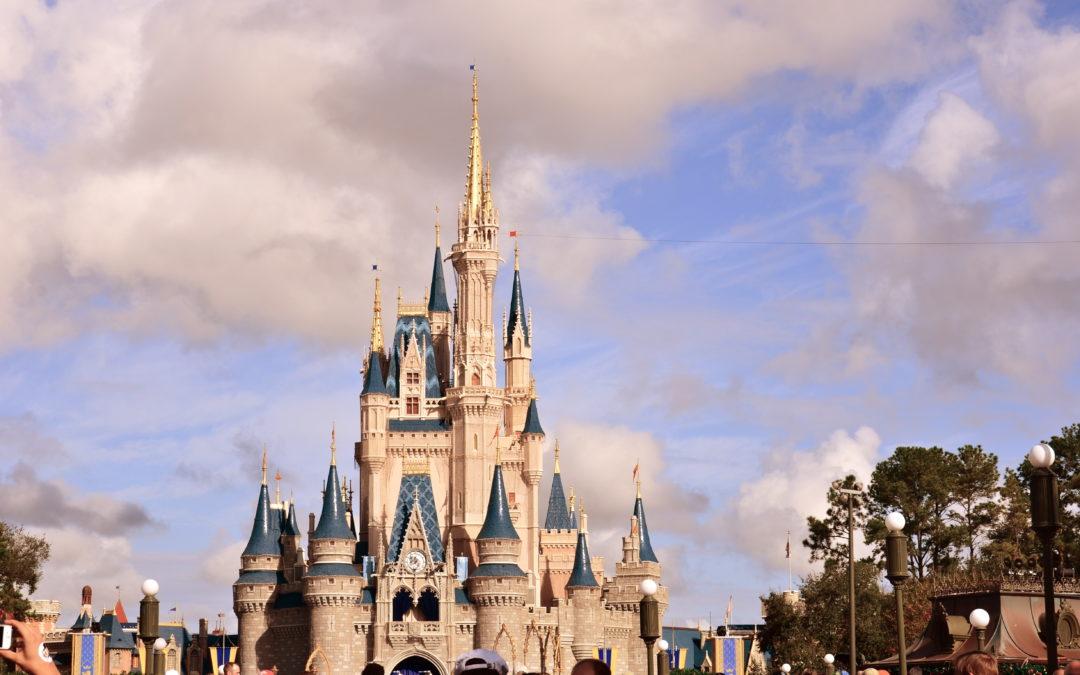 New Disney Park Guidelines