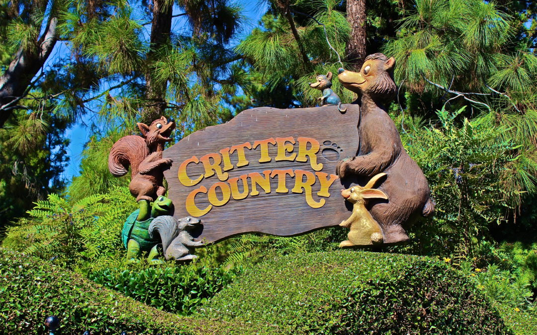 Critter Country Disneyland