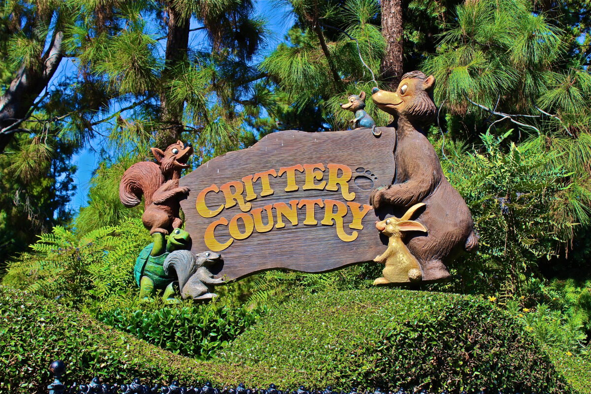 Will Critter Country At Disneyland Be Gone Soon?