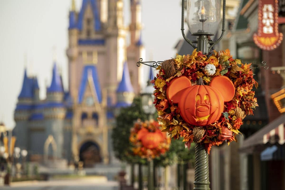 Disney Park News – Weekly Roundup