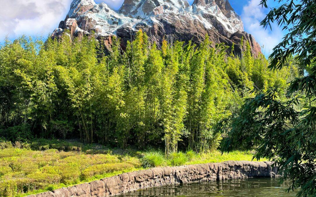 Walt Disney World To Increase Park Capacity