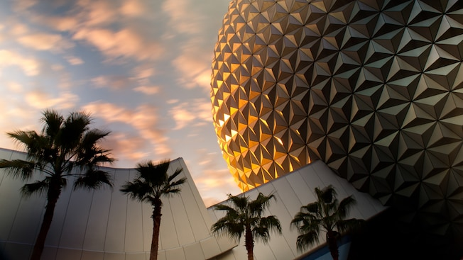 Epcot Geodesic Sphere with palm trees and sky