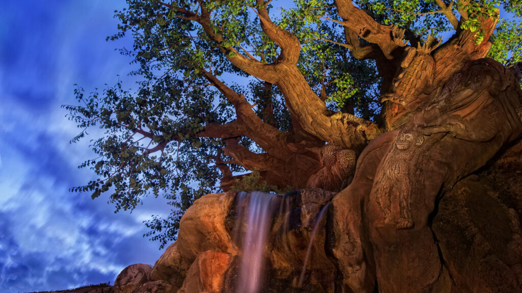 Tree with waterfall at dusk