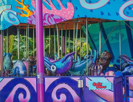 sea-carousel