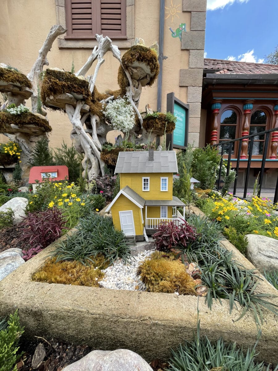 Miniature Yellow Home in garden