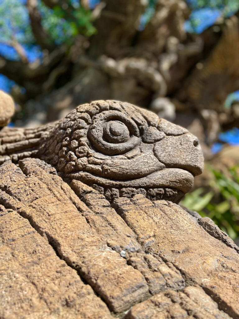 Close-up of Turtle carving