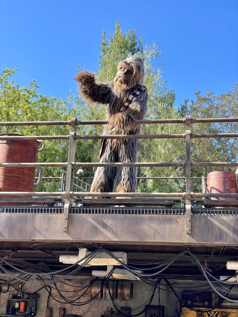 Chewy on top of a platform