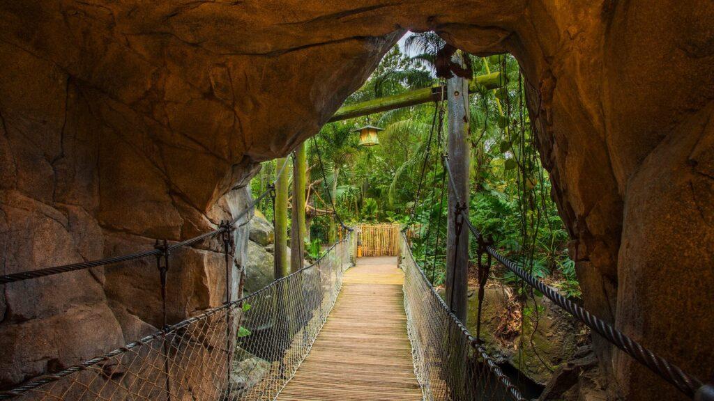 Wooden bridge through a cave