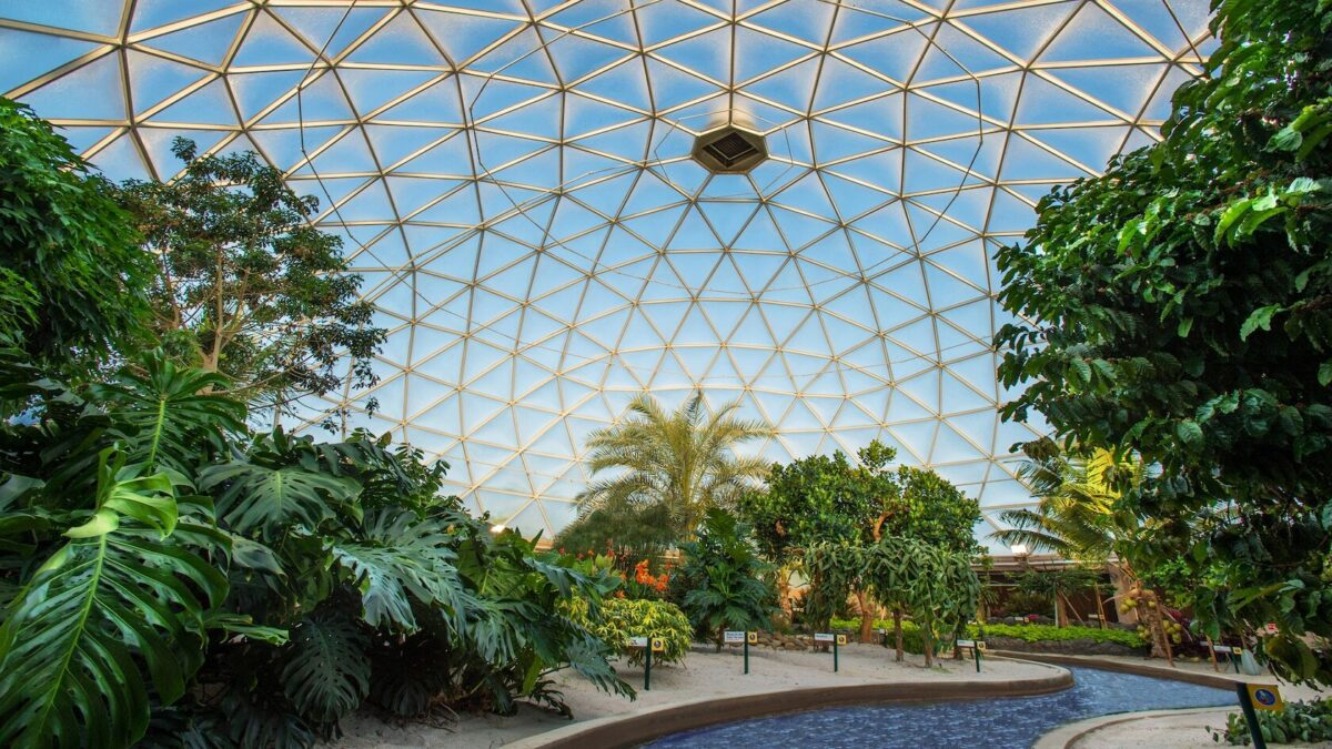 Biosphere with foliage