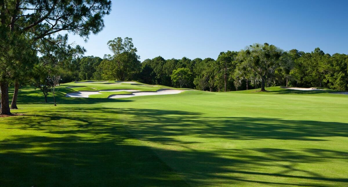 Fairway with trees and sand pits