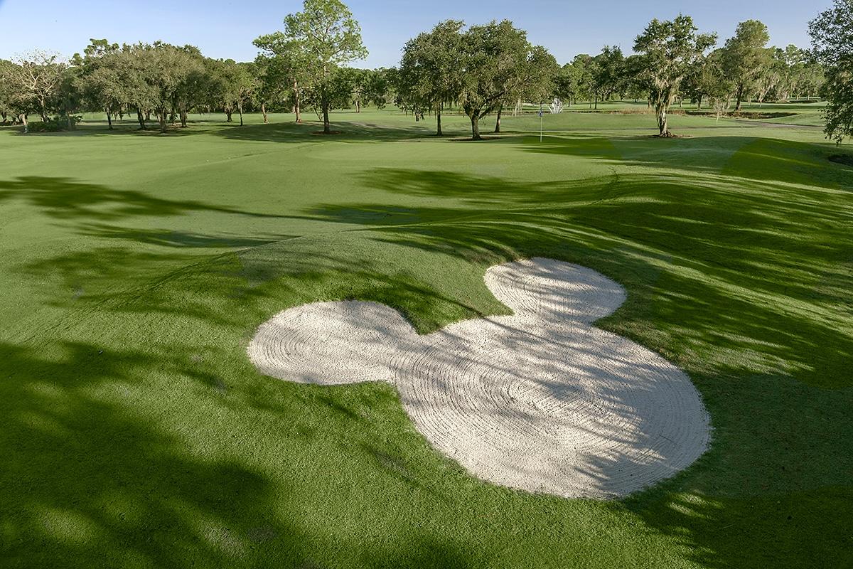 Mickey shaped sand pit