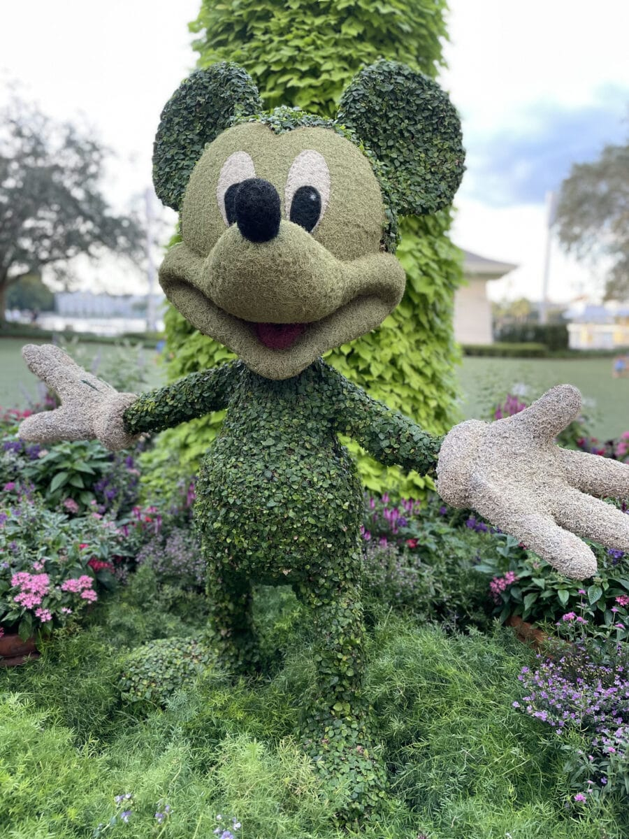 Mickey Mouse topiary with grass